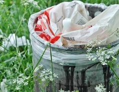 Śmieci w środowisku naturalnym